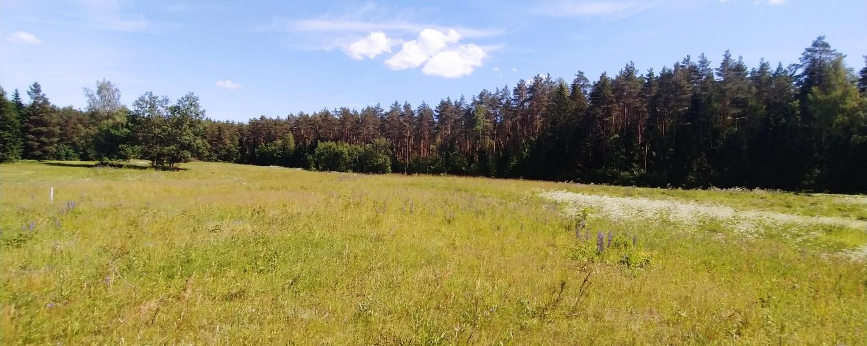 Peleniškių k., ,Sklypas,Parduodama,1085